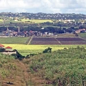St George Parish valley