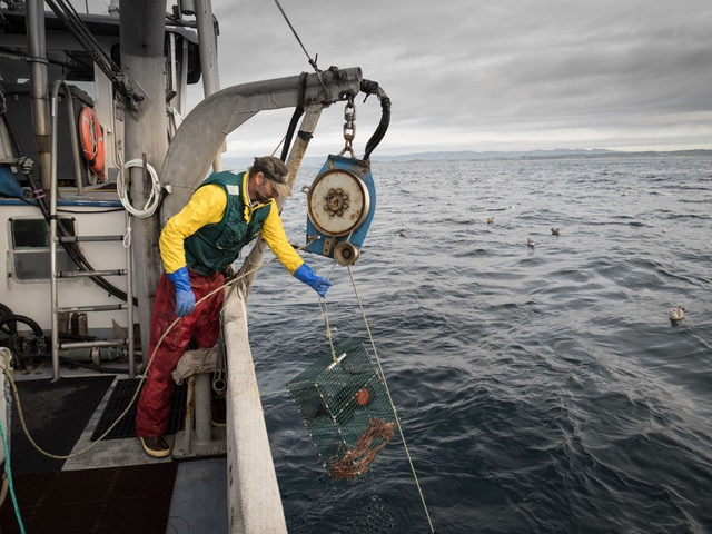 Developing a Fish Hub for Monterey Bay