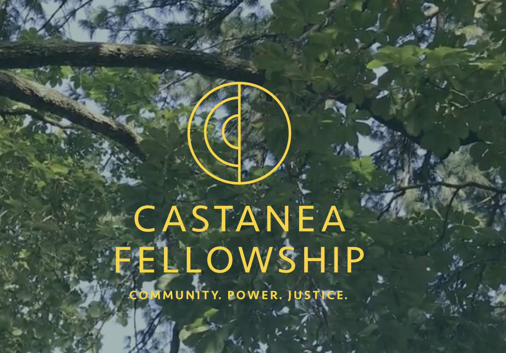 New Fellowship for Mid-Career Food Systems Professionals
