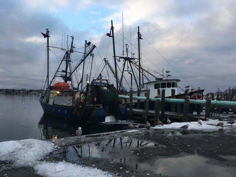 Developing a Financially Sustainable, Regionally-Oriented Seafood Industry in Rhode Island