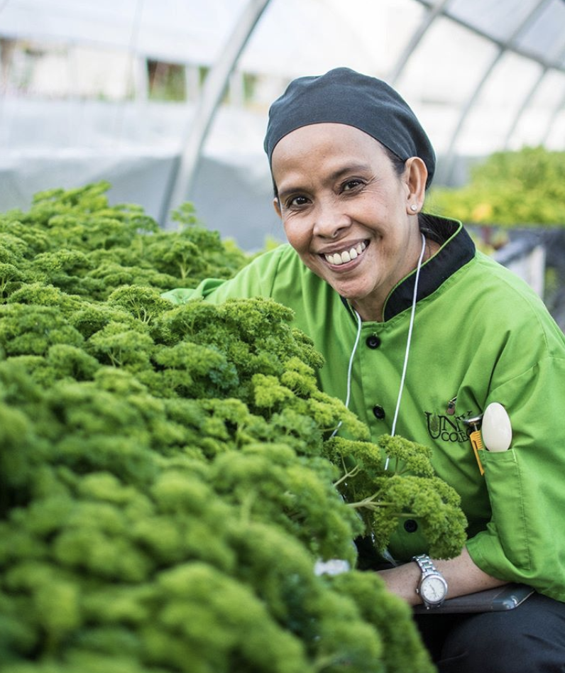 How KK&P Works with Food Hubs to Expand Their Reach